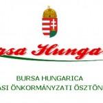bursa-hungarica-740x540w